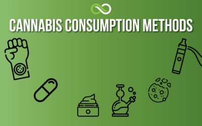 Cannabis Consumption Methods various accessories to consume cannabis pictured